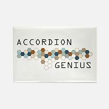 Accordion Genius Rectangle Magnet