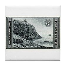 Cute Acadia national park Tile Coaster