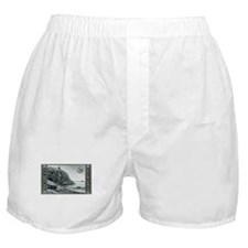 Cute Mt desert island Boxer Shorts