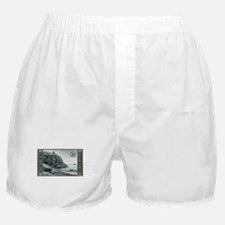Cute Mt desert island Boxer Shorts