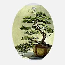 Cypress Oval Ornament