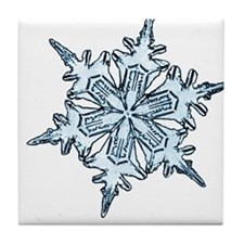 Silver Day Tile Coaster