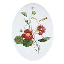 Nasturtium Oval Ornament