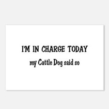 I'm in Charge Cattle Dog Postcards (Package of 8)