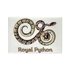 Royal Python Rectangle Magnet