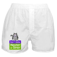 Don't Delay (Cat) - Neuter or Spay Boxer Shorts