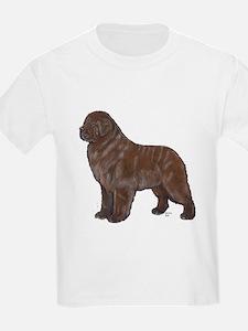 Newfoundland Bronze T-Shirt