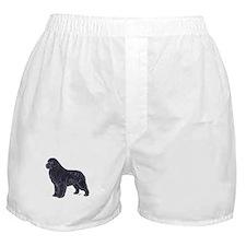 Newfoundland Black Boxer Shorts
