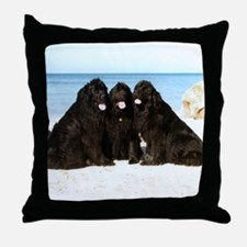 Newfoundland Beach Trio Throw Pillow