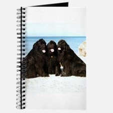 Newfoundland Beach Trio Journal