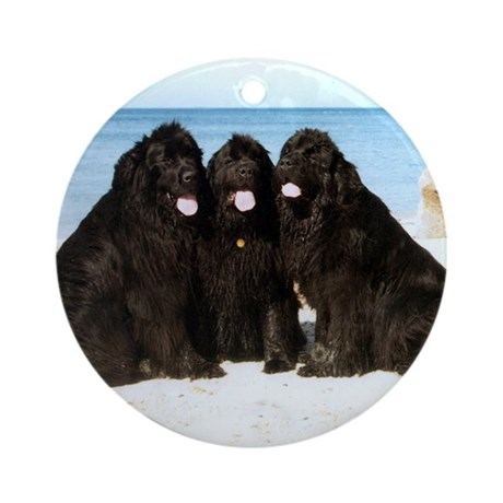 Newfoundland Beach Trio Ornament (Round)