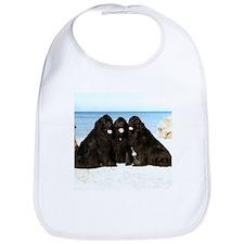 Newfoundland Beach Trio Bib