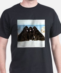 Newfoundland Beach Trio T-Shirt