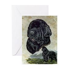Newfoundland Portrait Greeting Card