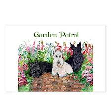 Scottie Garden Patrol Postcards (Package of 8)