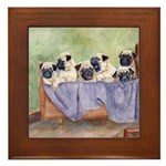 Pugs, Pug Framed Tile