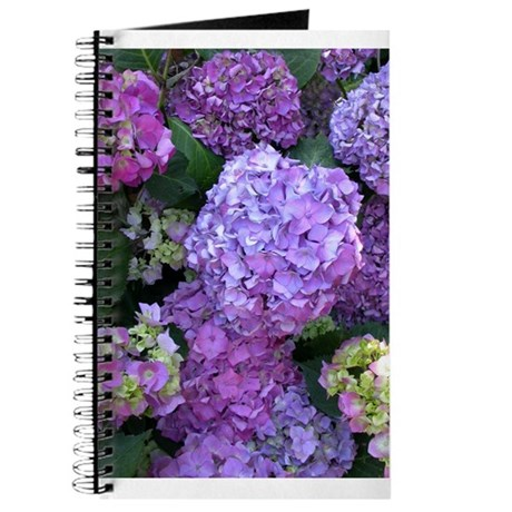 Hydrangeas Note Book
