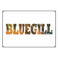 Bluegill Fishing Banner