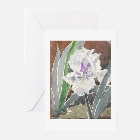 Iris Note Cards (Pk of 20)