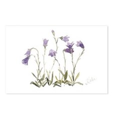 Harebell Postcards (Package of 8)
