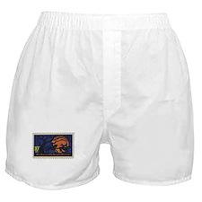 Sleepy Hollow Boxer Shorts
