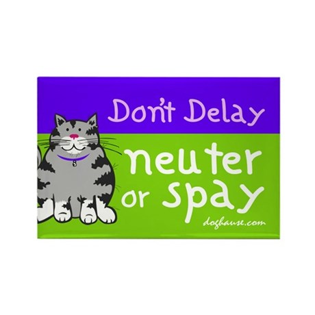 Don't Delay (Cat) - Neuter or Spay Rectangle Magne