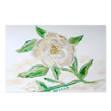 """""""Christmas Rose"""" Postcards (Package of 8)"""