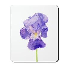 Purple Iris Mousepad