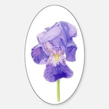 Purple Iris Oval Sticker (10 pk)