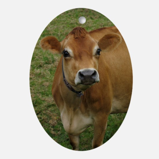 Jersey Cow Oval Ornament