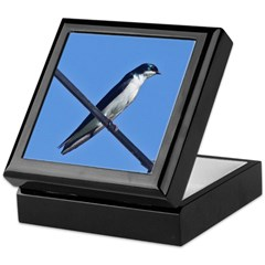 Tree Swallow Keepsake Box