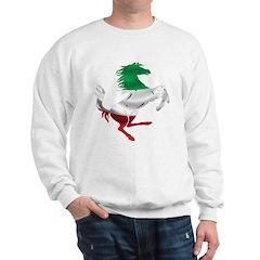 Italian Stallion Italy Flag Sweatshirt