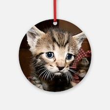 Cute Kitten Ornament (Round)