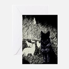 Moonlight Pack Greeting Cards (Pk of 10)