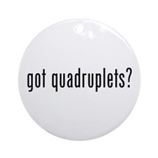 got quadruplets Ornament (Round)