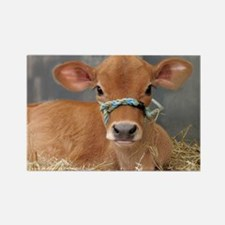 Cute Jersey Calf Rectangle Magnet