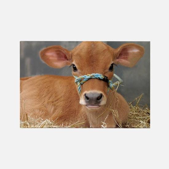 Cute Jersey Calf Rectangle Magnet