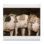 Jersey Pigs Tile Coaster