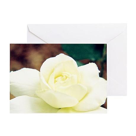 Rose - Greeting Card