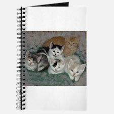 Kittens Journal