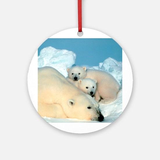 Lazy Polar Bears Ornament (Round)
