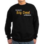 Scott Designs Big Deal Sweatshirt (dark)
