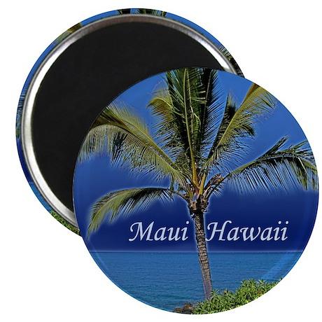 Maui Hawaii Magnet