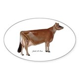 Jersey cow 10 Pack