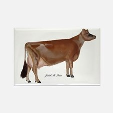 Jersey Cow Rectangle Magnet