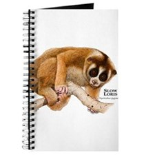 Slow Loris Journal