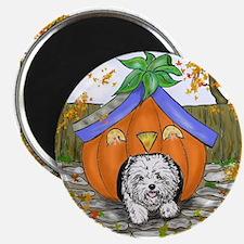 Pumpkin House Magnet