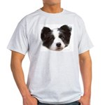 Example of Border Collie Puppy Designs