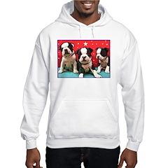 Boston Terrier Pups Hoodie