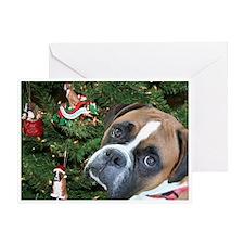 Baron Christmas Card